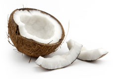 Wholesale Organic Dried Coconut